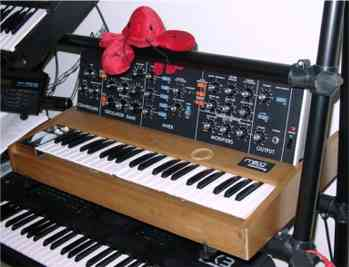 Lulu the Lobster on a Minimoog
